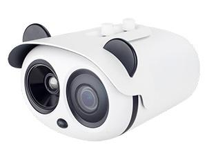 ZNT8-B0F8-TASX4: IP камера и тепловизор в одном корпусе